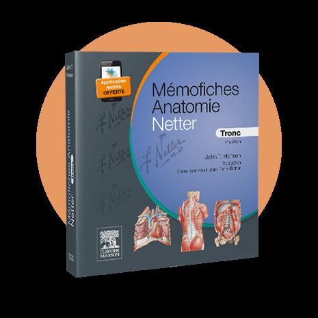 Couverture - Mémofiches Anatomie Netter - Tronc