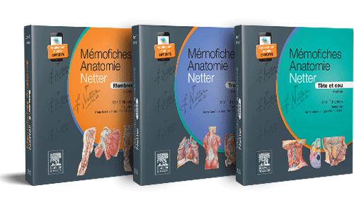 Bundle Mémofiches Anatomie Netter