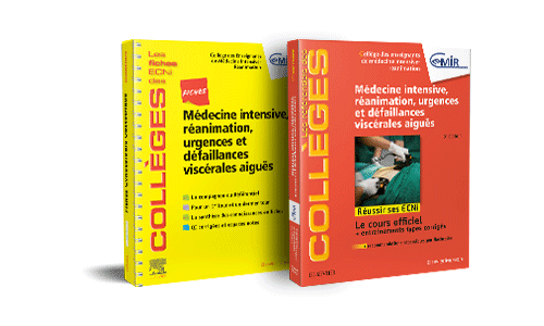 Bundle Douleurss et soins palliatifs