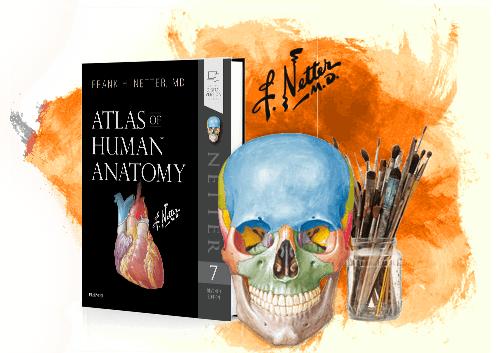 Couverture 3d- Atlas d'anatomie humaine
