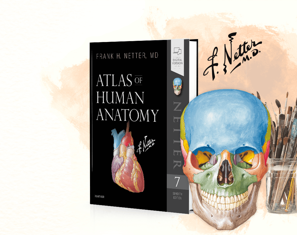 Netter Anatomy Atlas Ebook