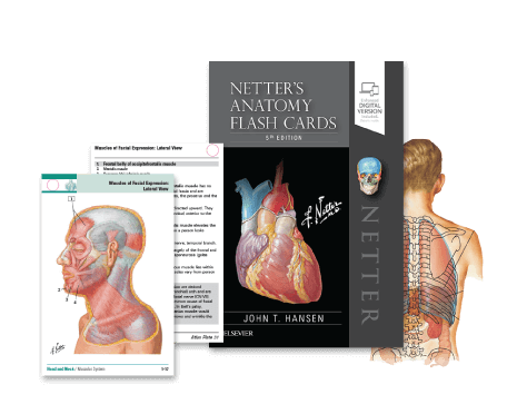 Introducing Netters Atlas Of Human Anatomy 7th Edition